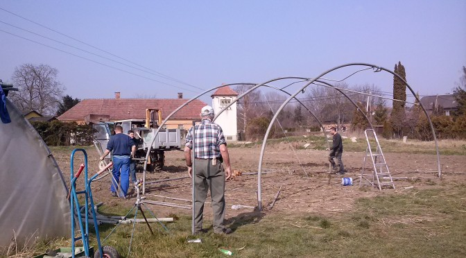 Folienhaus am Biohof Mogg errichtet