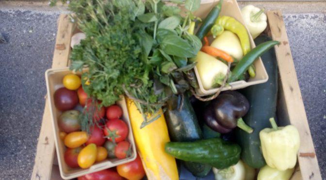 Nachhaltige Lebensmittelbeschaffung